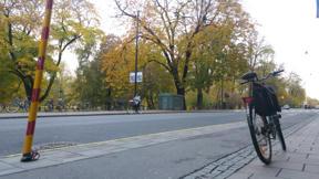 Bild: 26 oktober: Än finns det löv på träden i     Humlegården.