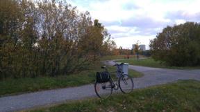 Bild: 20 oktober: Höstvackert. Några löv sitter kvar.