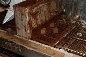 Bild: Tasty bits pass through a shower of molten chocolate.